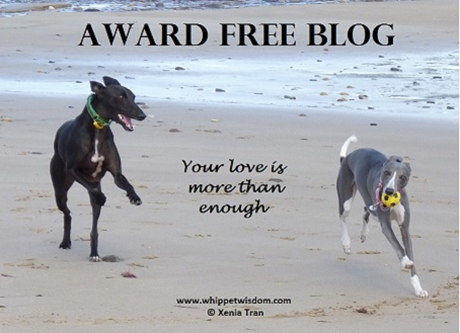 Award Free Blog for whippetwisdom.com logo