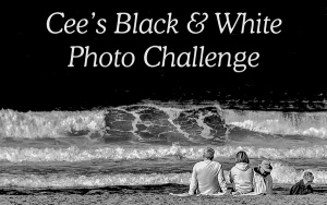 cee-b-and-w-photo-challenge