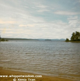 Lake Siljan in Sweden in Summer.