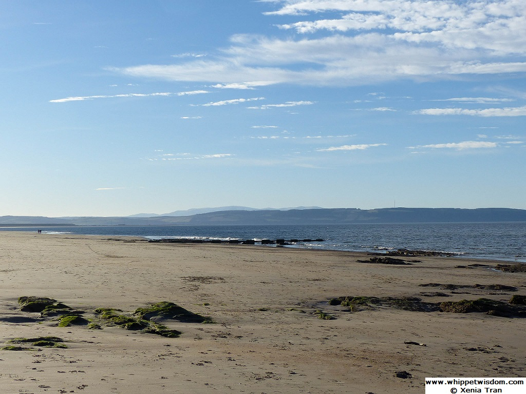 Low tide on the Moray Firth