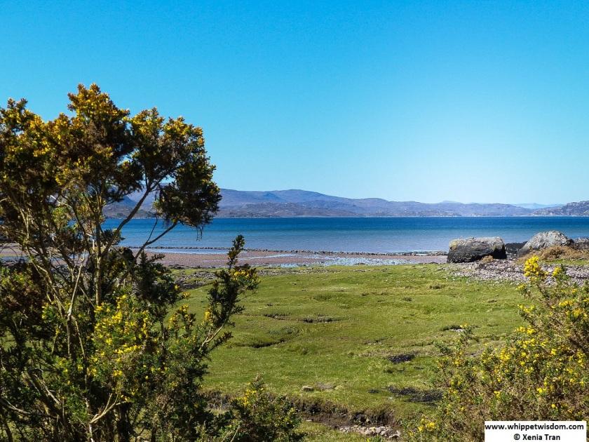 Loch Torridon beach and salt marshes
