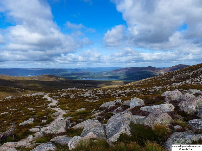 View over Loch Morlich from Mount Cairngorm