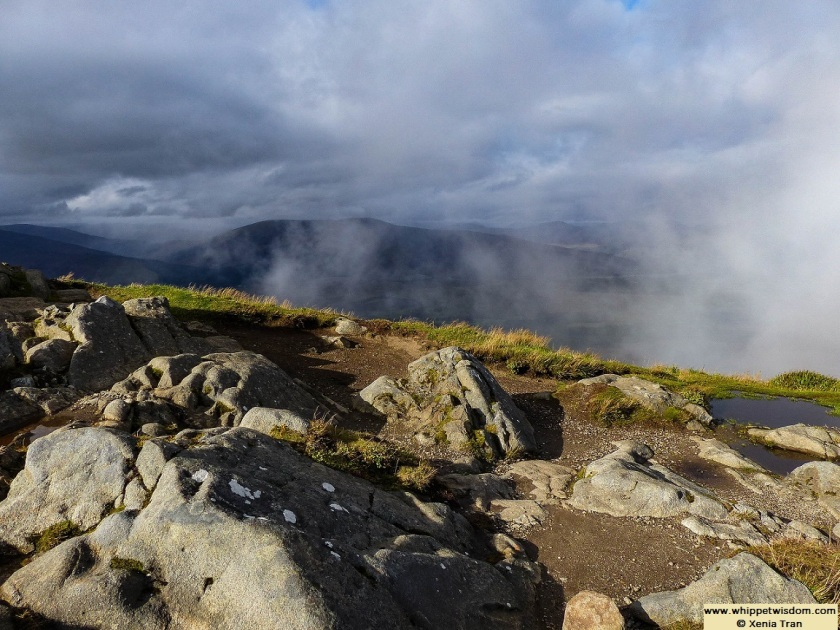 view from summit of Sgurr Finnisg-aig
