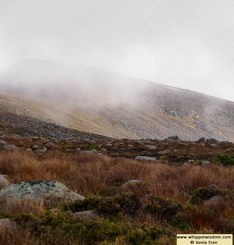 cloud and mist rising at mountain top in Autumn