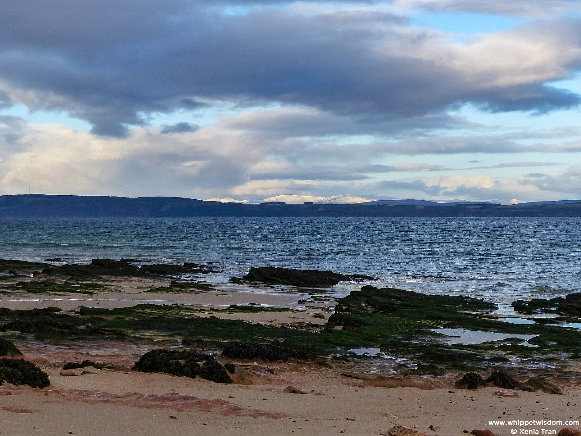 snow on the Bens (mountains) across the Moray Firth