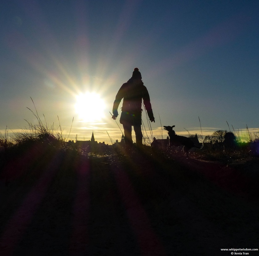 Early morning winter sun with silhouettes of a whippet, a man in a bobble hat, dunes, roofs and spires