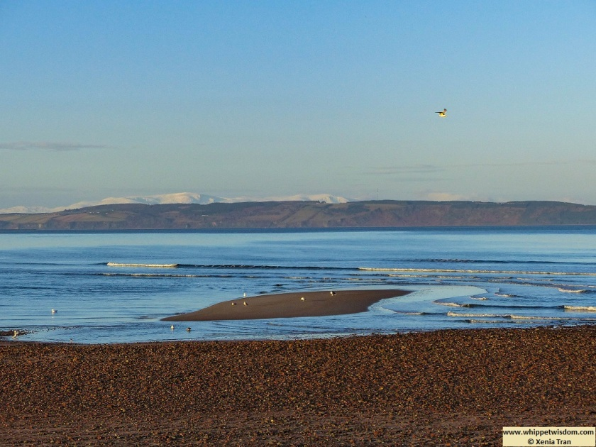 snow capped mountains across the Moray Firth at low tide