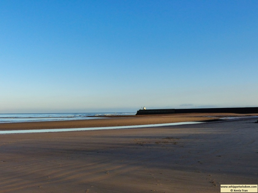 beach at low tide with a small pier and lighthouse at low tide on a sunny Winter morning