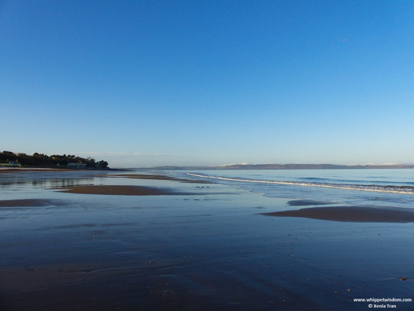 tide rolling out to sea on a cold Winter morning with snow capped mountains on the horizon