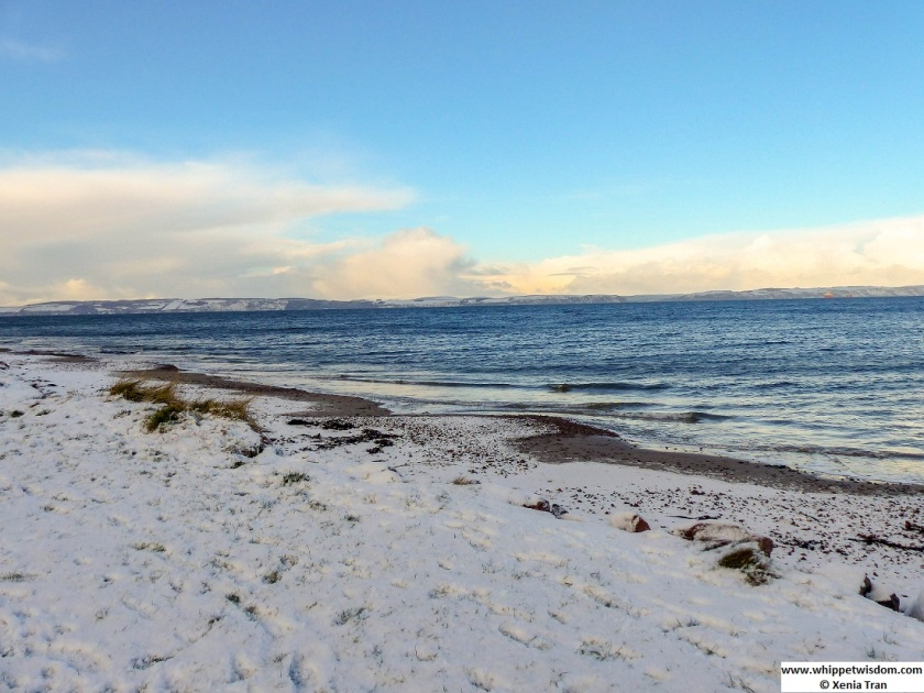 view over the Moray Firth from a snow-covered beach at high tide