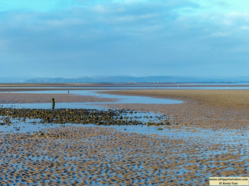 Findhorn beach at low tide