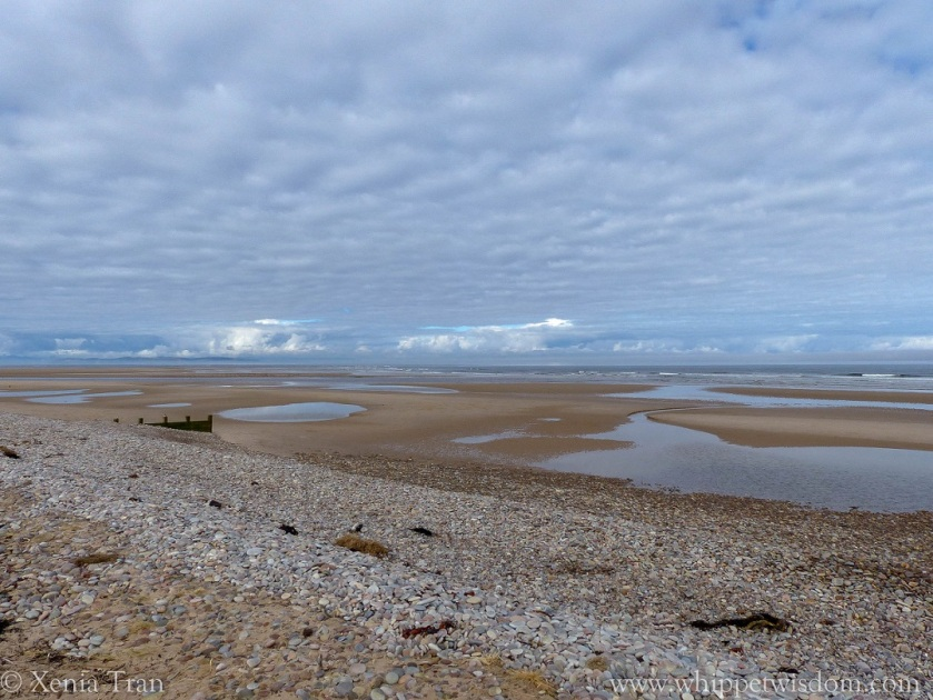 shingle, sand, breakwater and tidal pools under low hanging cloud