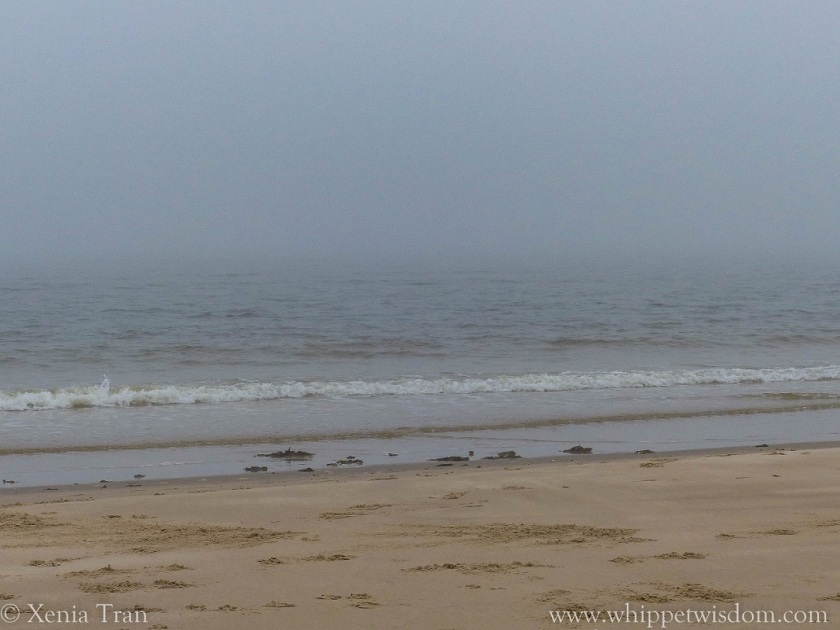 beach and sea in the mist, very limited view