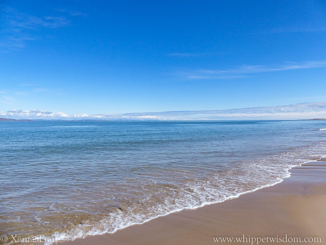 blue sky reflected in the sea on an outgoing tide