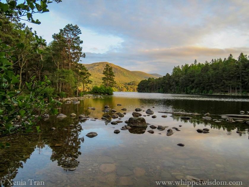 Loch an Eilein at sunset