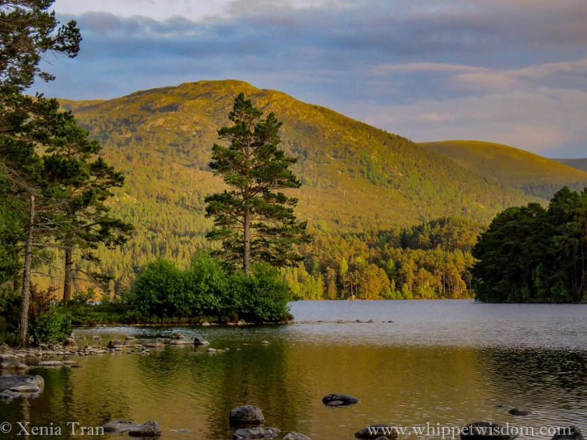 Slighty zoomed in image of Loch an Eilein at sunset