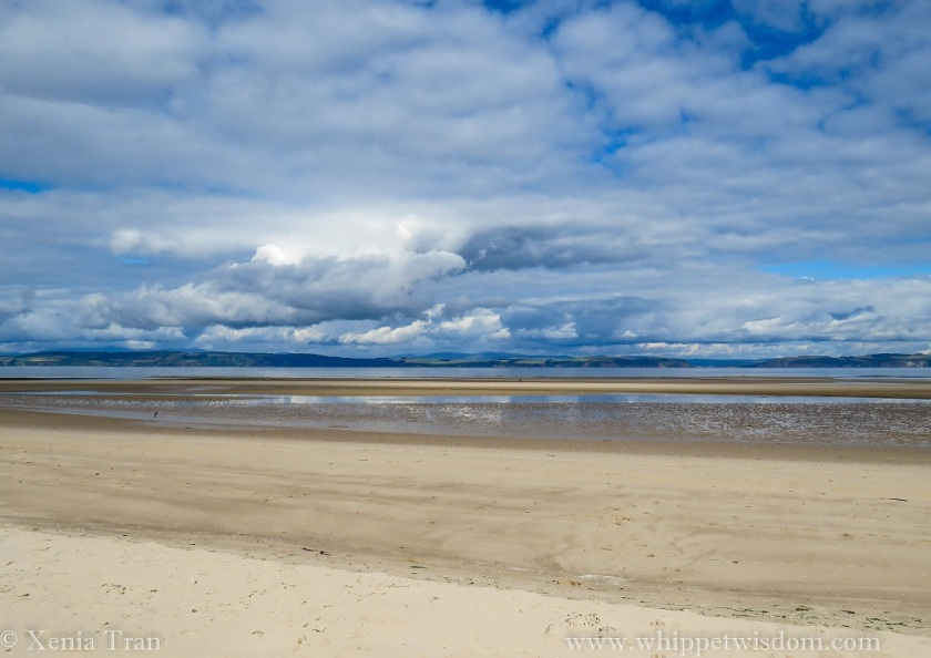 Moray Firth and tidal pools at the beach, a blue sky full of cotton wool clouds