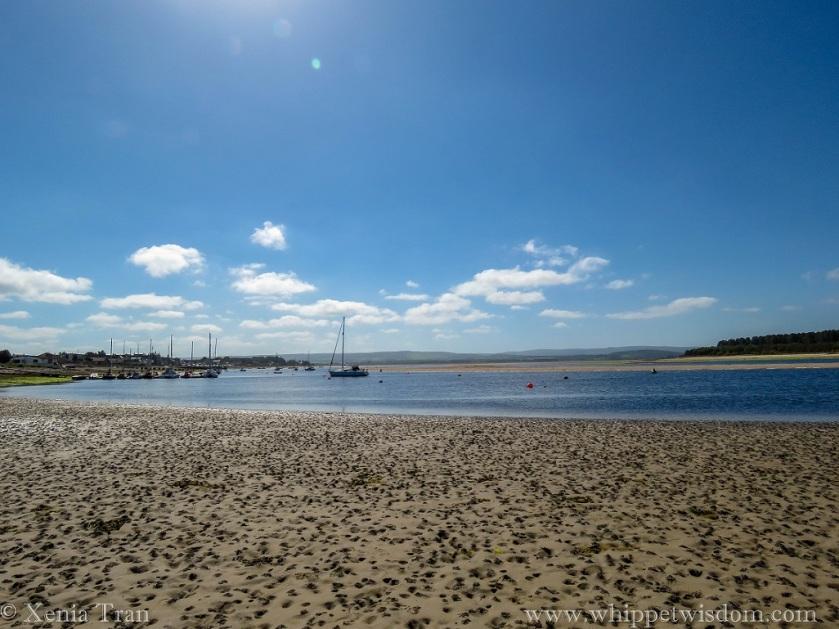 Boats, some anchored and some moored at pontoons in Findhorn Bay