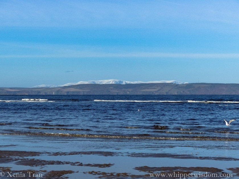snow on the peaks across the Moray Firth with the beach and incoming tide in the foreground