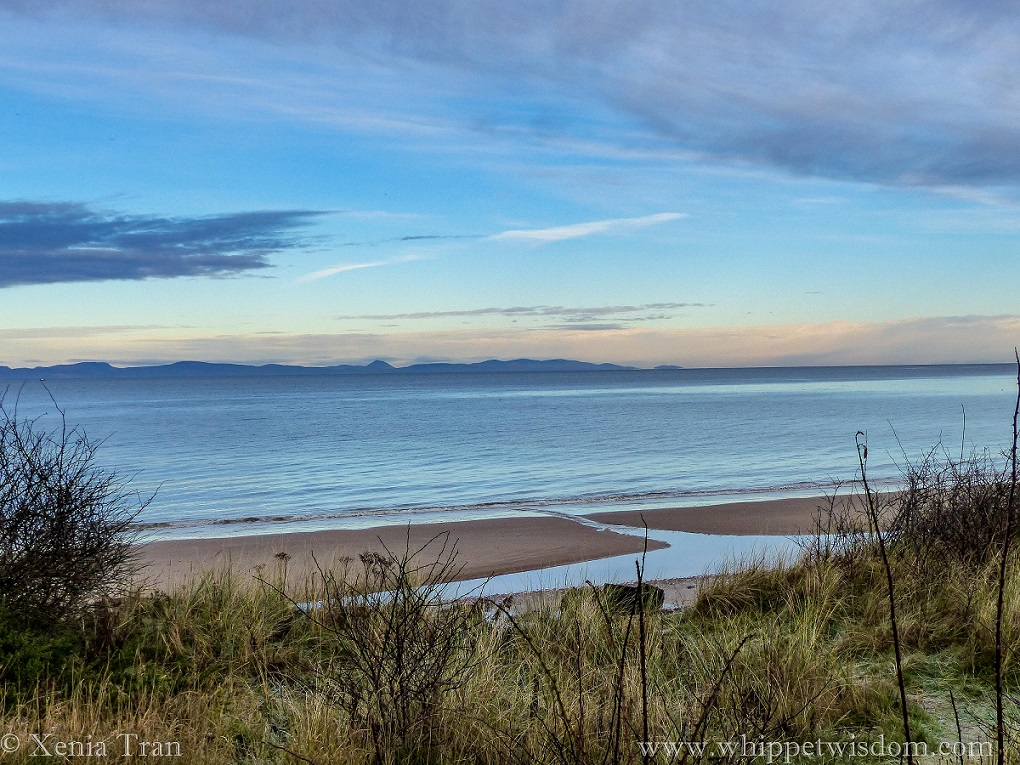 sunrise over the Moray Firth, blue mountains across the water
