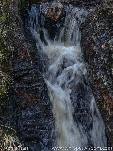 waterfall flowing over rocks, a face appears in the tumbling flow
