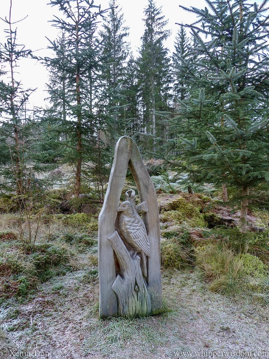 wooden sculpture of a hawk in Achany Forest