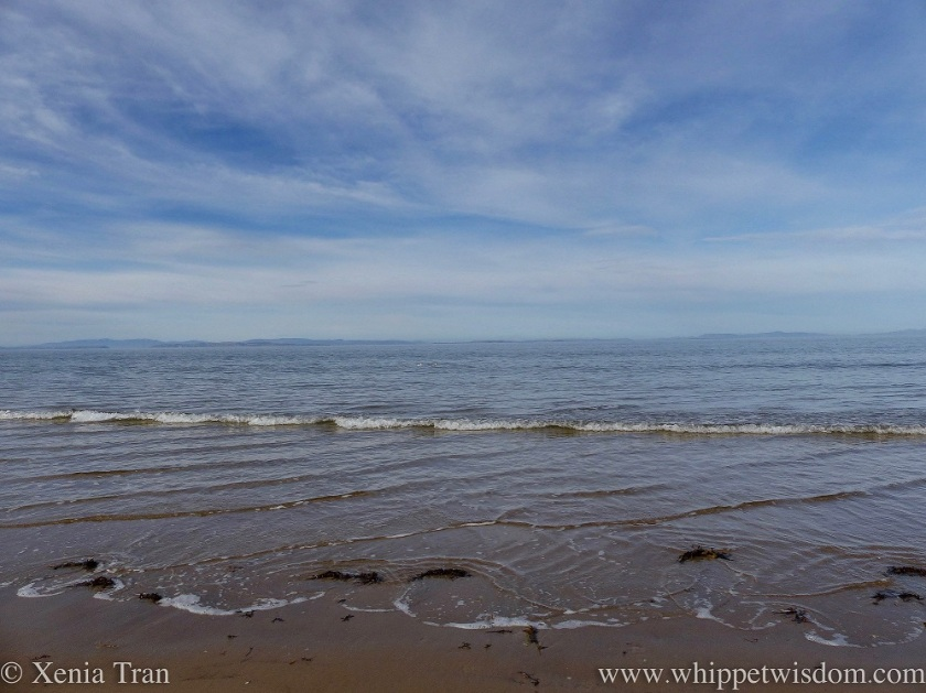 view over the Moray Firth at low tide