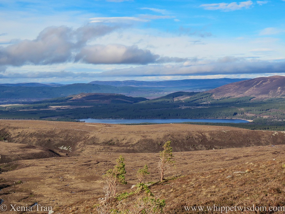 View over Loch Morlich with all the snow gone