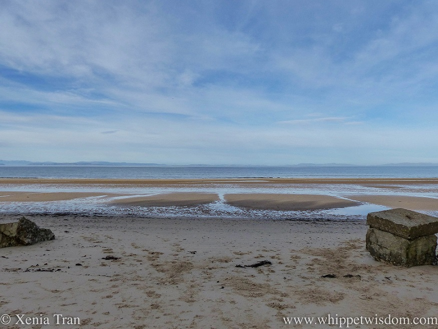 view across the Moray Firth at low tide with remnants of WWII defences in the foreground