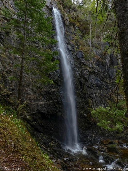the water flowing down Plodda Falls in Glen Affric in spring