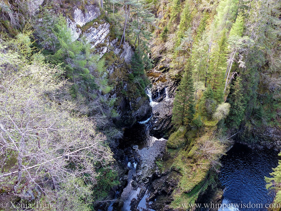 water falls and cascades, pine trees and rock where the Abhainn Deabhag joins Alt na Bodachan