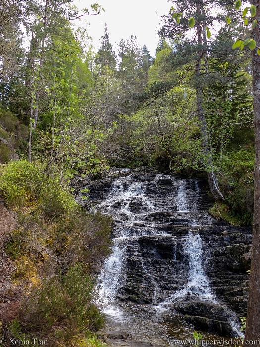 cascading waters of Alt na Bodachan in Glen Affric in Spring