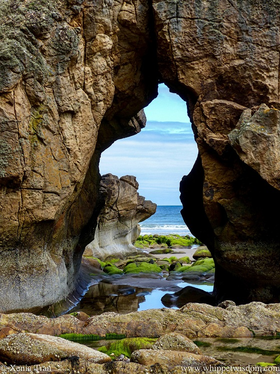 a window shaped gap in a seaside rock through which we see stones, tidal pools and seaweed on the sand