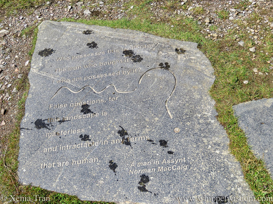 segments from A Man in Assynt by Norman MacCaig engraved in a slap, with wet pawprints from two dogs