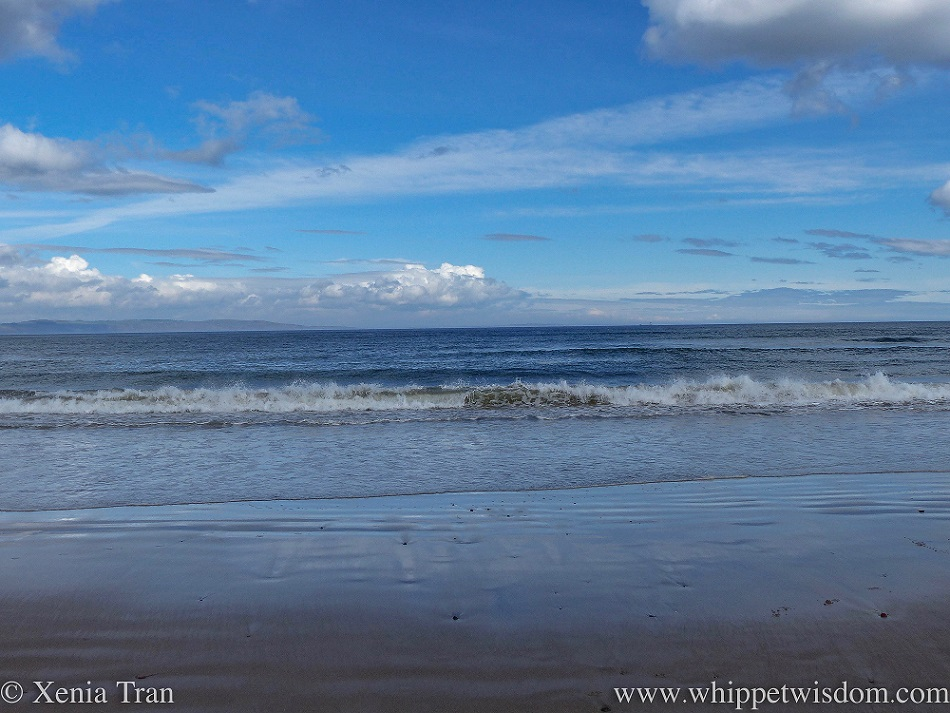 shoreline and retreating sea under a blue sky with whispy clouds