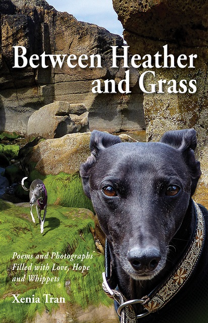 Front Cover of Between Heather and Grass by Xenia Tran