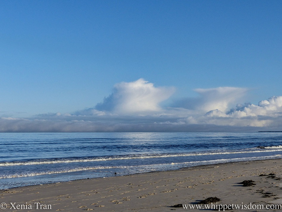 white clouds above a bank of mist over a calm blue sea