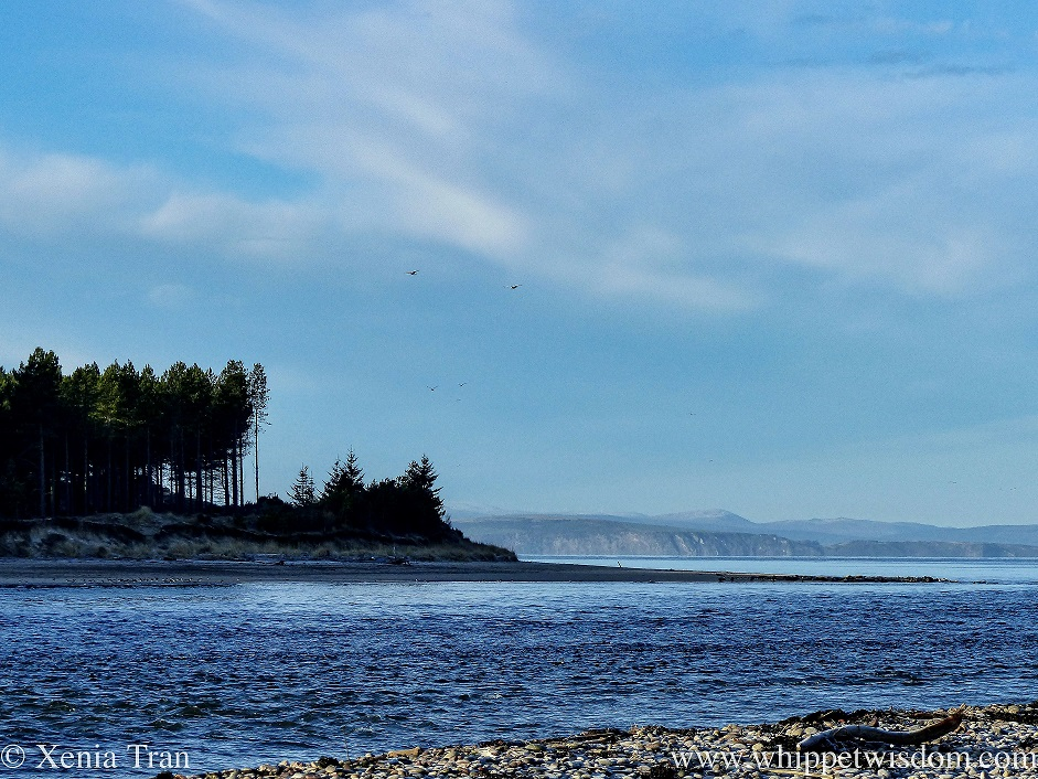the mouth of the river Findhorn as it flows into the firth