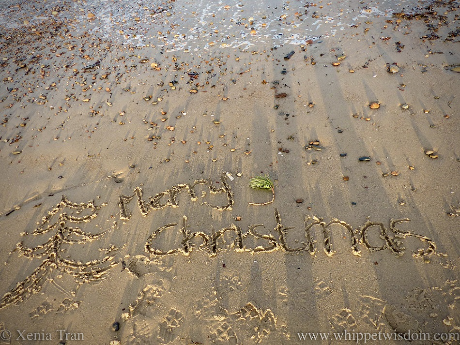 Merry Christmas written in the sand beside the tidal line