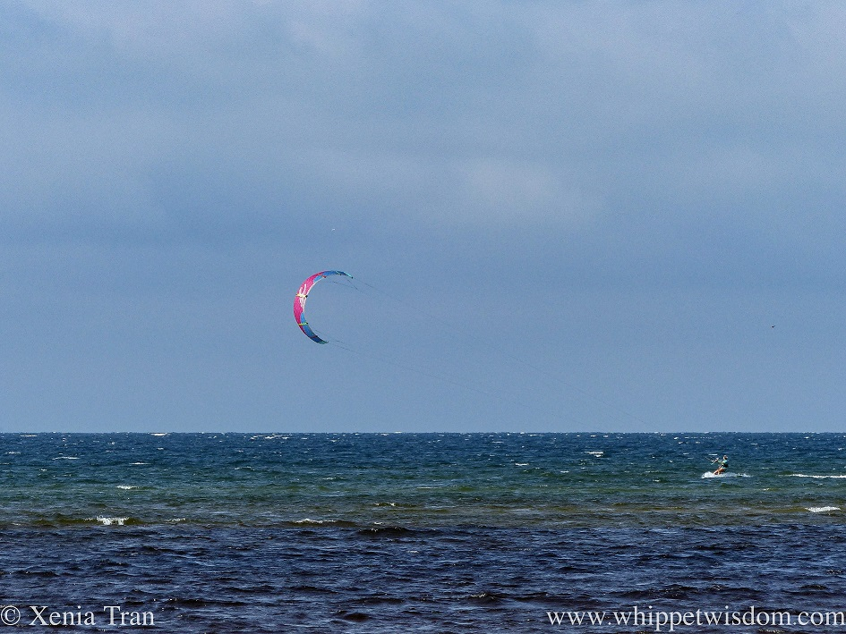 a kite surfer riding the wind and waves