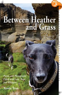 look inside feature for Between Heather and Grass