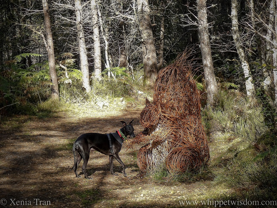 a black whippet standing beside a large squirrel sculpture