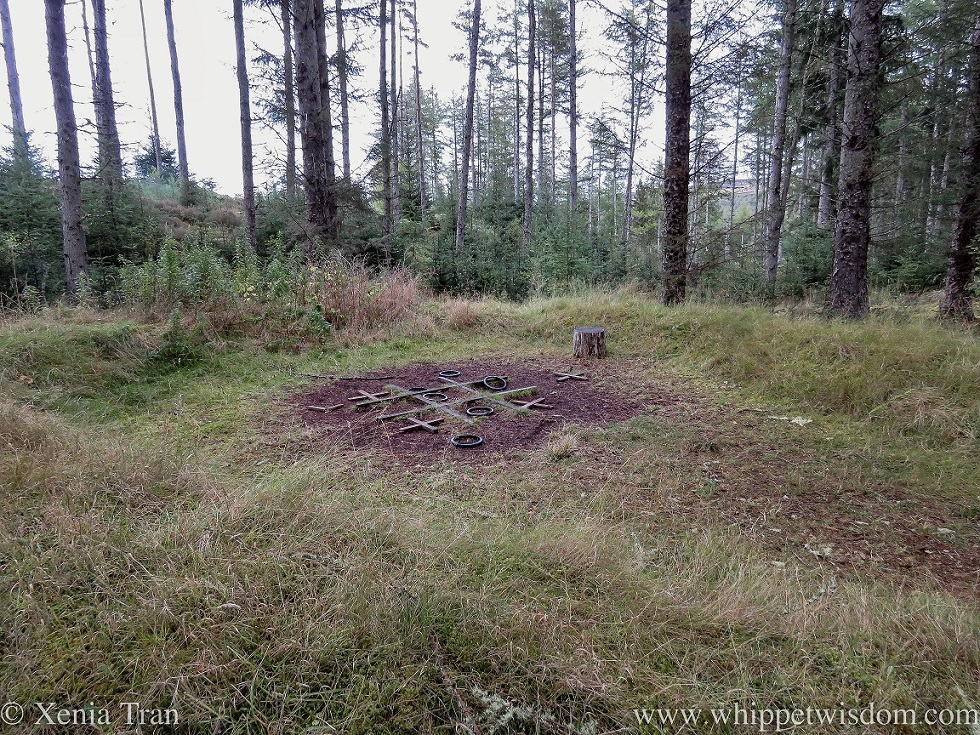 a play area in the forest with large noughts and crosses on the ground