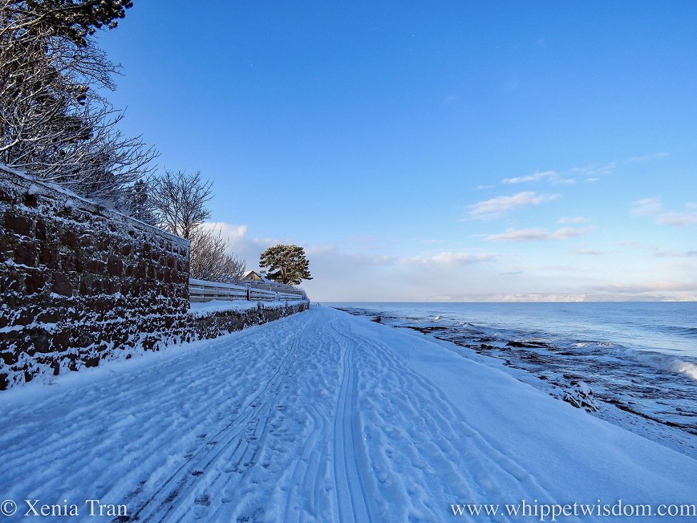 a snow-covered promenade beside the seashore