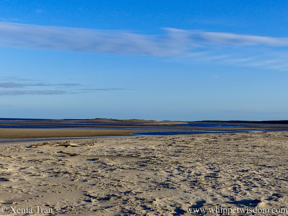 view from the beach of a tidal lagoon and sand bar