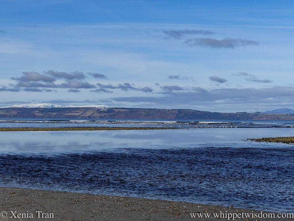 the Moray Firth as the tide is flowing back in between the bars with snow on the mountains