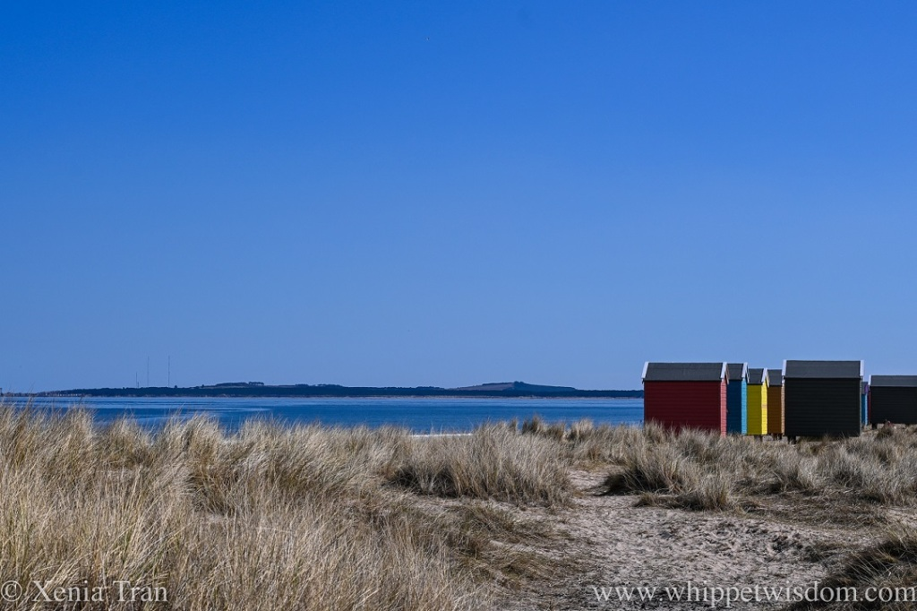 a set of freshly painted beach huts overlooking the sea