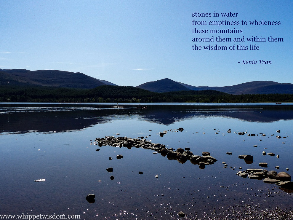 tanka poem and image of Loch Morlich combined into a taiga by Xenia Tran