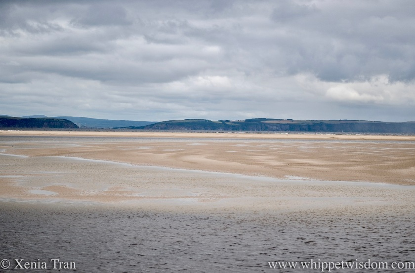 tide flowing into the lagoon, pools and sand bars