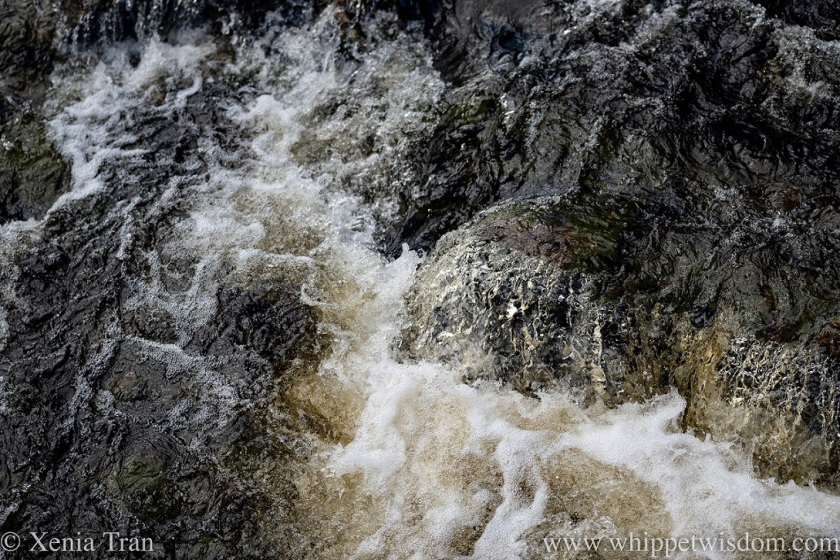 close up of water flowing in a peaty river in spate